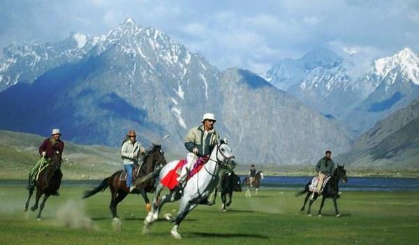 Shandur Top Travel Guide Ibex